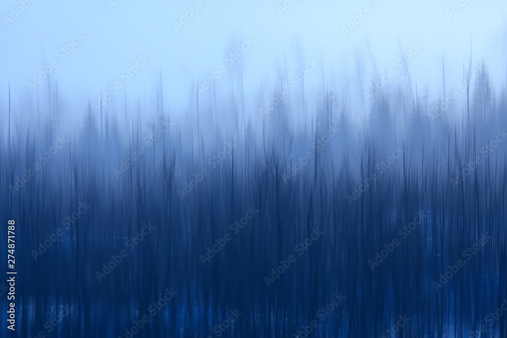 Fototapety, obrazy: abstract forest blurred winter vertical lines / winter forest background, abstract landscape