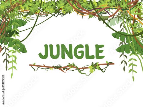Canvas-taulu Jungle exotic leaves and lianes vector background