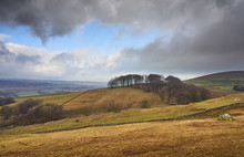 Winter Farmland In The Yorkshire Dales, Near Horton In Ribblesdale.