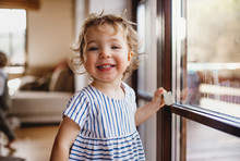 A Toddler Girl Standing By Window Indoors At Home, Looking At Camera.