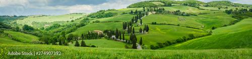 Fotografiet  Cypress road near small village of Monticchiello, Tuscany, Italy