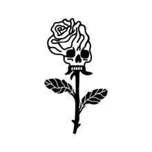 Rose Flower Skull Skeleton White Background