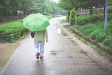 Spring And Raining Season Activity Concept From Backside Of Old Woman Walk And Travel With Hold Her Green Umbrella With Large Park Background