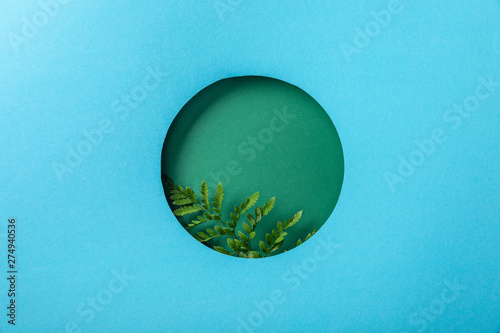 Fotografía  geometric background with green fern leaf in round hole on blue paper