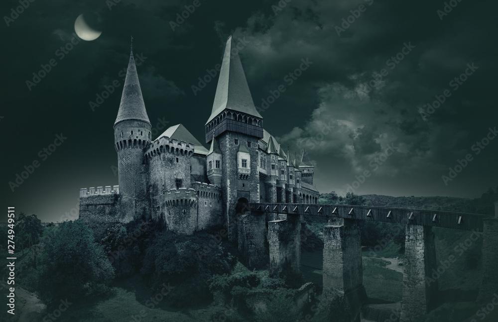 Fototapety, obrazy: Corvin's Castle in Hunedoara