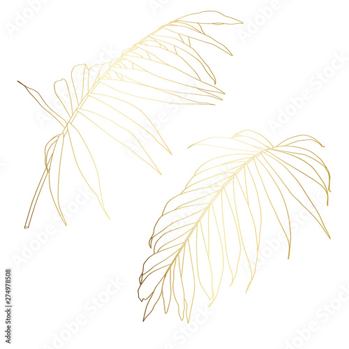 obraz lub plakat Hand drawn tropical summer design element: golden palm tree leaves in silhouette, line art.