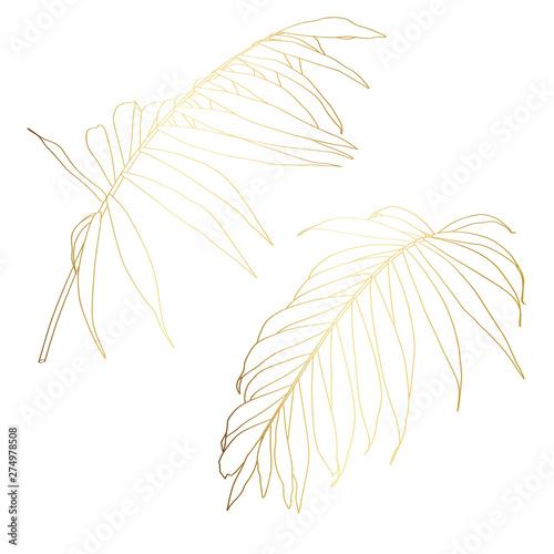 fototapeta na ścianę Hand drawn tropical summer design element: golden palm tree leaves in silhouette, line art.