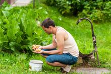 Young Man Farmer Rinsing Dirt ...