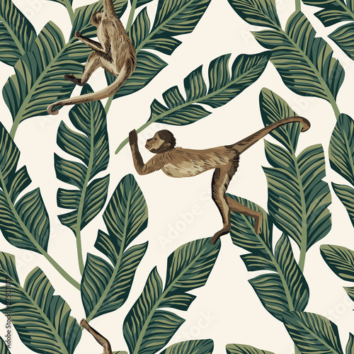 Monkey banana leaves seamless white background Wallpaper Mural
