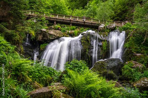 Foto auf Leinwand Wasserfalle triberg waterfall, triberg, Schwarzwald, germany