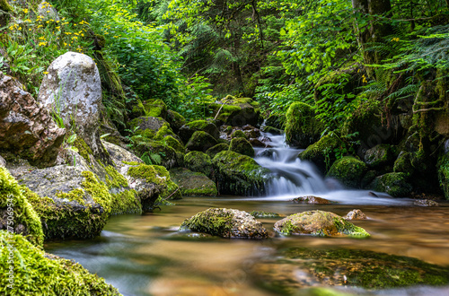 Wall Murals Waterfalls tiny waterfall in black forest, germany