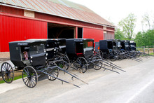 Row Of Parking Amish Buggies In Front Of A Red Barn