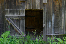 Open Old Wooden Doors On An Abandoned Wooden Wall