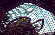 Greenhouse Complex In The Gard...