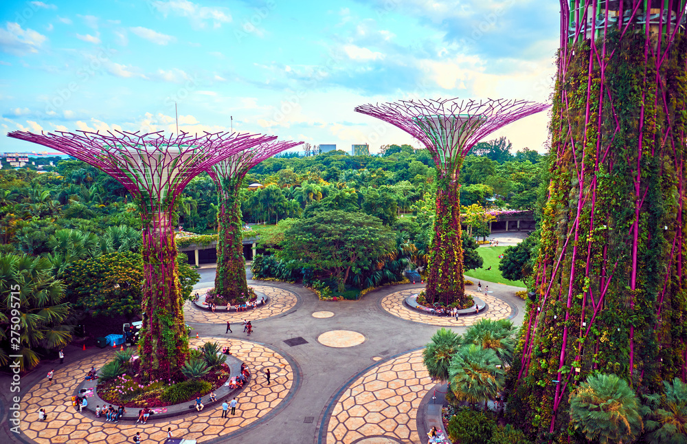 Fototapety, obrazy: Gardens by the Bay  with Supertree in Singapore