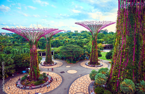Photo  Gardens by the Bay  with Supertree in Singapore