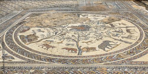 Foto op Plexiglas Cyprus Mosaic of animals at Orpheus's chamber in the Roman excavation of Volubiis