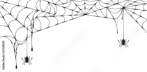 Halloween spiderweb border with hanging spiders Fototapet