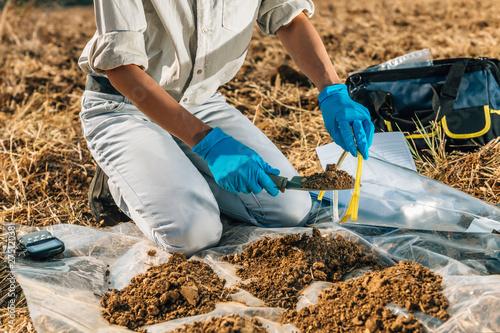 Slika na platnu Soil Testing. Agronomy Inspector Taking Soil Sample