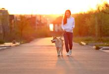 Young Woman Walking Her Adorab...