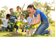 Kids Planting Trees With Volun...