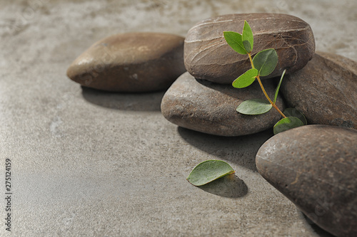 Spa stones with eucalyptus on color background. Space for text