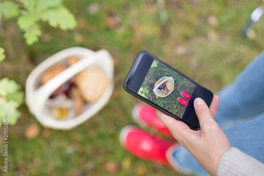 Fototapeta technology, nature and leisure concept - close up of woman photographing mushrooms in basket by smartphone in autumn forest