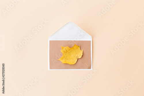 nature, season and mail concept - dry fallen autumn maple leaf with envelope on beige background
