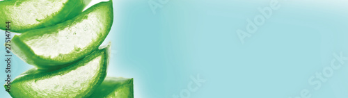 aloe vera banner with text space, Fototapet