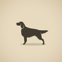 Setter Dog - Silhouette Of The Irish Or England Setter - Vector Illustration