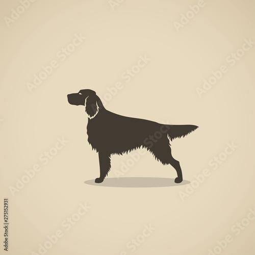 Setter dog - silhouette of the Irish or England setter - vector illustration Canvas Print