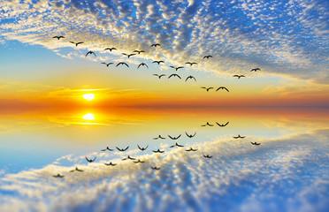 Panel Szklany 3D reflejos de naturaleza al amanecer