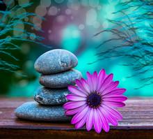 Piedras Y Flores Sobre Un Fondo Azul Relajandte