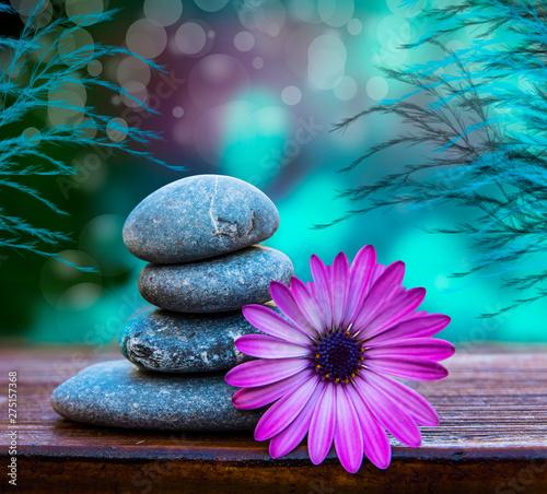 Acrylic Prints Stones in Sand piedras y flores sobre un fondo azul relajandte