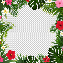 Palm Leaf And Flowers Isolated...