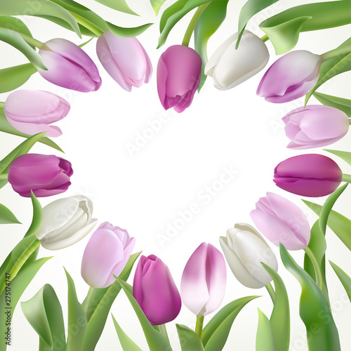 Fotografie, Obraz Card template with lilac and white tulips