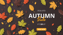 Autumn Sale Background. Folded Paper Art. Vector Illustration Template
