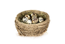 Bird's Nest With Eggs Isolated On White