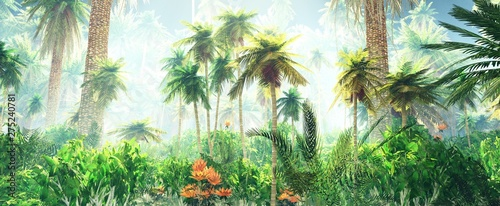 Foto auf Leinwand Palms Blooming jungle in the fog, flowers among palm trees, palm trees in the fog