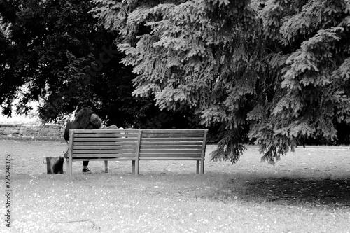 Photo Les amoureux sur le banc public