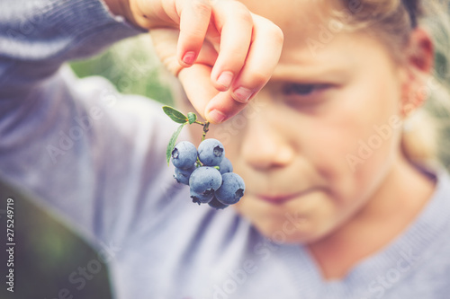 Canvas-taulu girl holding blueberries