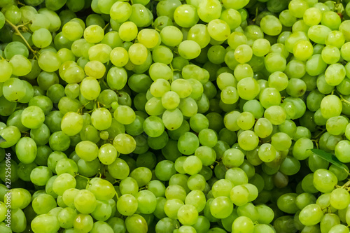 Stampa su Tela Fresh Fruit Brunch Green Grapes on Shelf in Fresh Fruit market Thailand Travel B