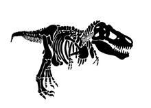 Graphical Silhouette Of Raptor Isolated On White,vector Dinosaur,illustration For Tattoo And Printing