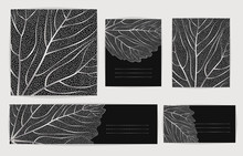 Set Backgrounds With Silver Leaves. Vector Illustration