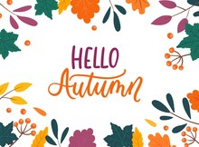 Colorful Autumn Background With Leaves Isolated On White Background. Cozy Fall Vector Illustration For Cards, Poster, Packaging Etc.
