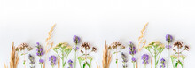 Alternative Medicine. Medicinal Herbs Lavender, Oregano, Sage, Yarrow On A White Background. Top View, Copy Space, Banner.