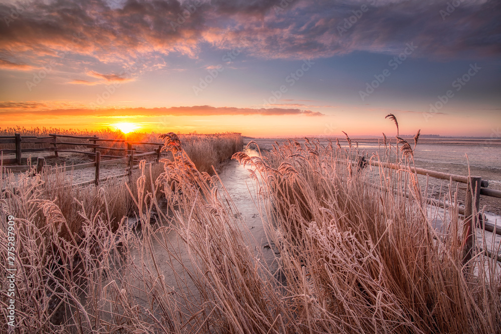 Fototapety, obrazy: A winter landscape in the Netherlands with a beautiful sunrise with bright colours in the sky and frost on the fields - National Park Lauwersmeer, Groningen, The Netherlands