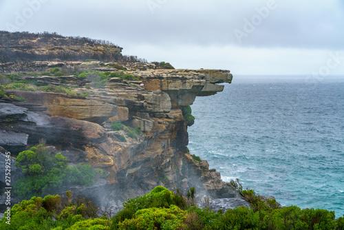 Fotografia  hikink in the royal national park, eaglehead rock, australia 41