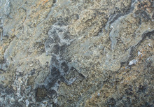 The Texture Of The Stone. Untr...