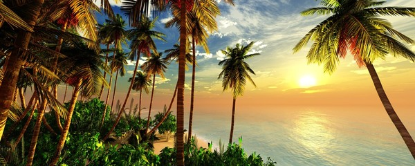 Fototapeta Drzewa Beach with palm trees at sunset, tropical coast with palm trees under the setting sun